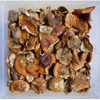 Fly Agaric Mushroom - Amanita Muscaria Legal High