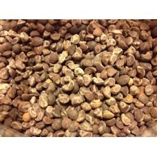 Hawaiian Baby Woodrose Seeds - Argyreia Nervosa Legal High